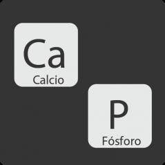 Correcta relación Calcio – Fósforo